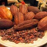 """Происхождение слова """"шоколад"""" и открытие какао"""