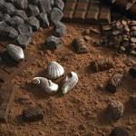 Польза темного шоколада для здоровья человека