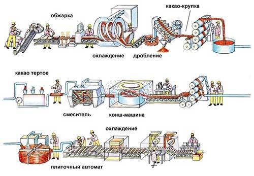 proizvodstvo shokolada (4)