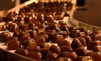 требования к качеству шоколада